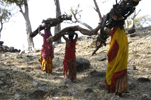 Villagers carrying firewood